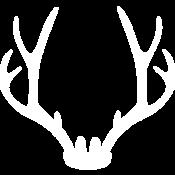 Established Events Scotland Logo